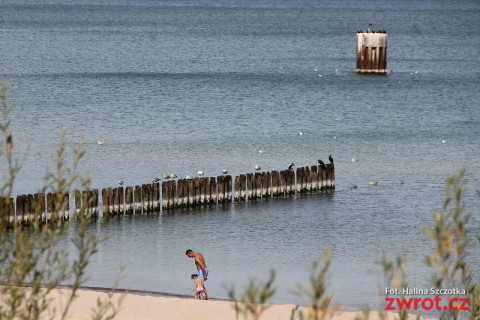 Pár slov o pláži vpolštině aneb po pláži se plazí plazi