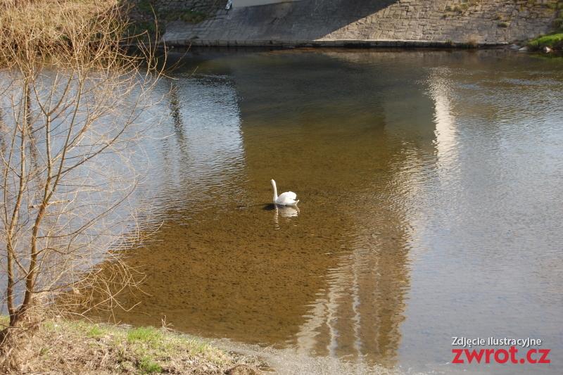 Těšínské Slezsko v amatérském objektivu