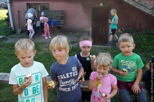 Z redakční pošty: Svátek pečené brambory