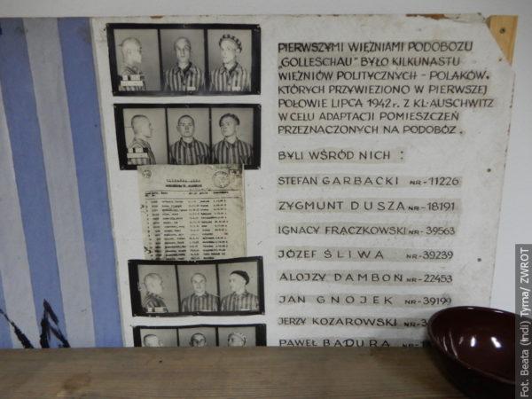 Procházky se Zwrotem: Osvětimská síň v Goleszowě