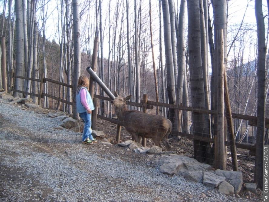Lesní park překvapení byl opět zpřístupněn pro turisty