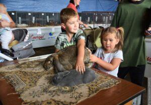 V Jablunkově se konal čtvrtý ročník výstavy králíků, drůbeže a exotického ptactva