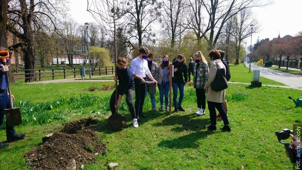 Studenti gymnázia v Českém Těšíně zasadili strom Juliusze Słowackiego